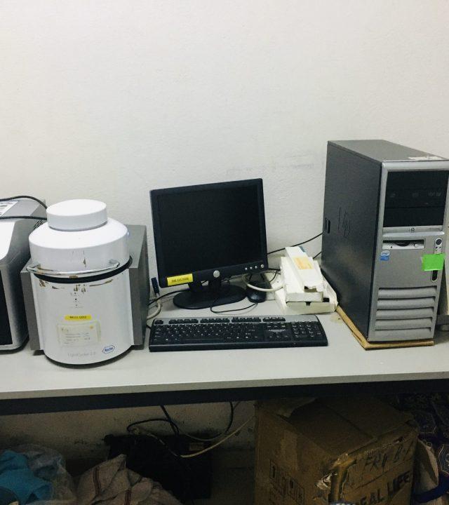 RT_PCRjpg